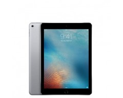 Apple iPad Pro9.7 Wi-FI + Cellular 256GB Space Gray (MLQ62)